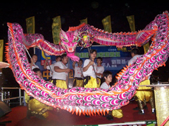 *Chinese Dragon Dance